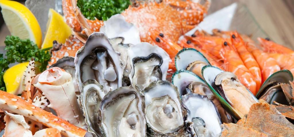 Frutos do mar fazem bem à saúde?